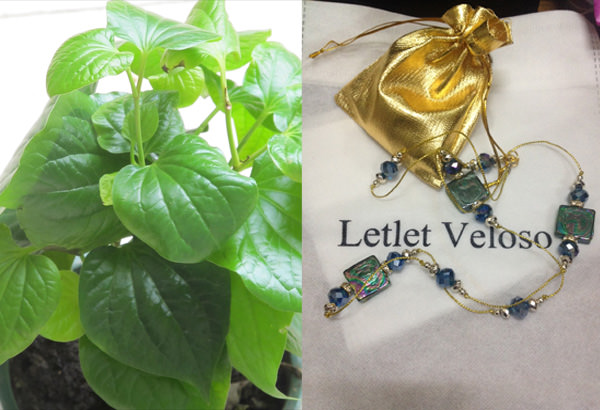 Left: The cado plant, the leaves used in my new favorite Thai inspired cado salad from the garden of Malu Veloso; Right: Necklace by Letlet Veloso available in different styles at Podium basement shop of Malu Veloso