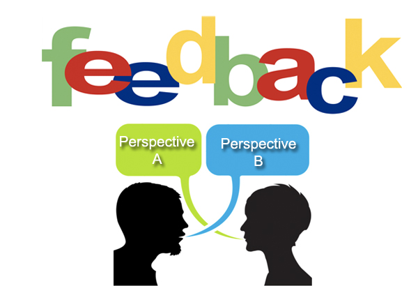Feedback and Perspectives
